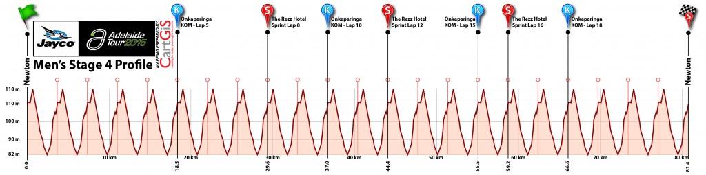 Stage 4 Mens Profile v1